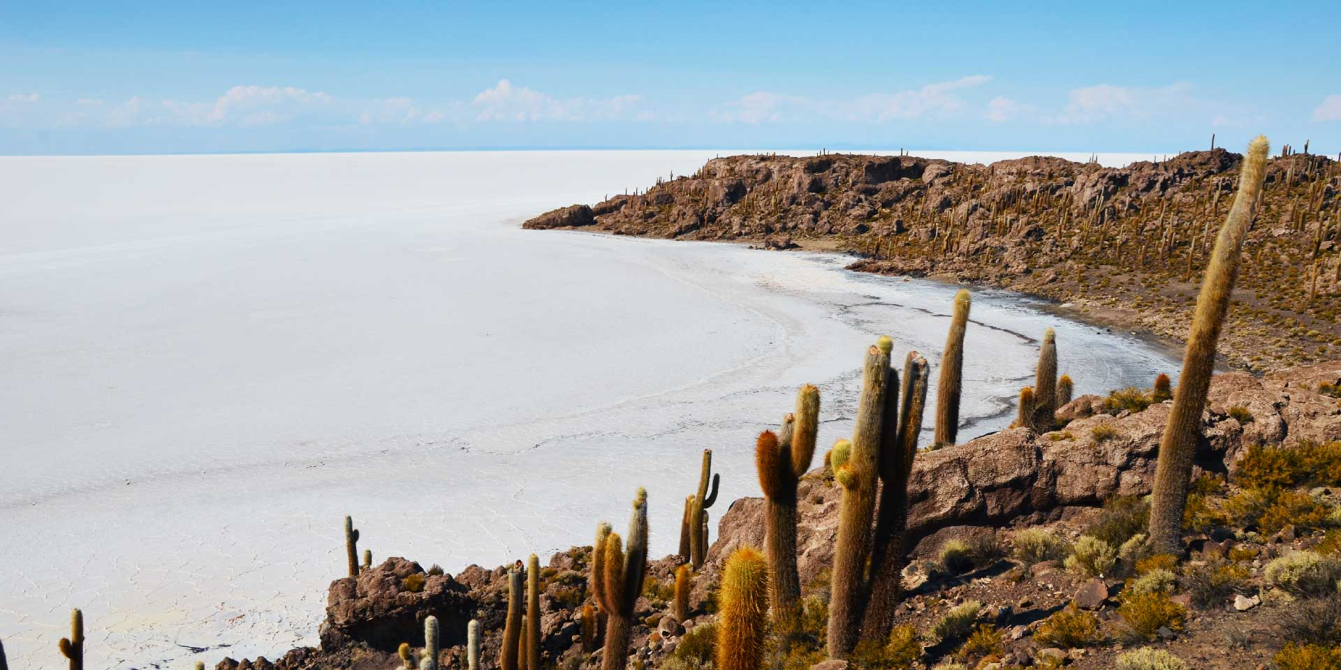 Bolivie-Salar-Uyuni-Incahuasi-c-G-8-web