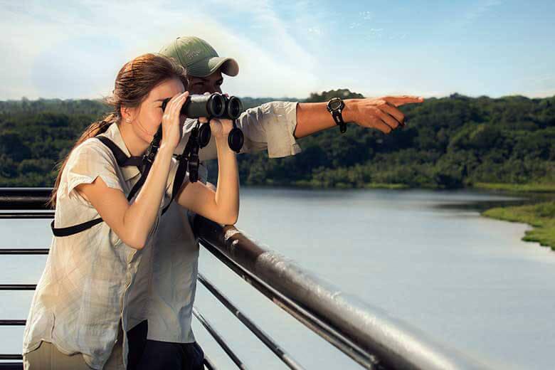 activites-napo-wildlifecenter-lodge-c-napo-wildlifecenter