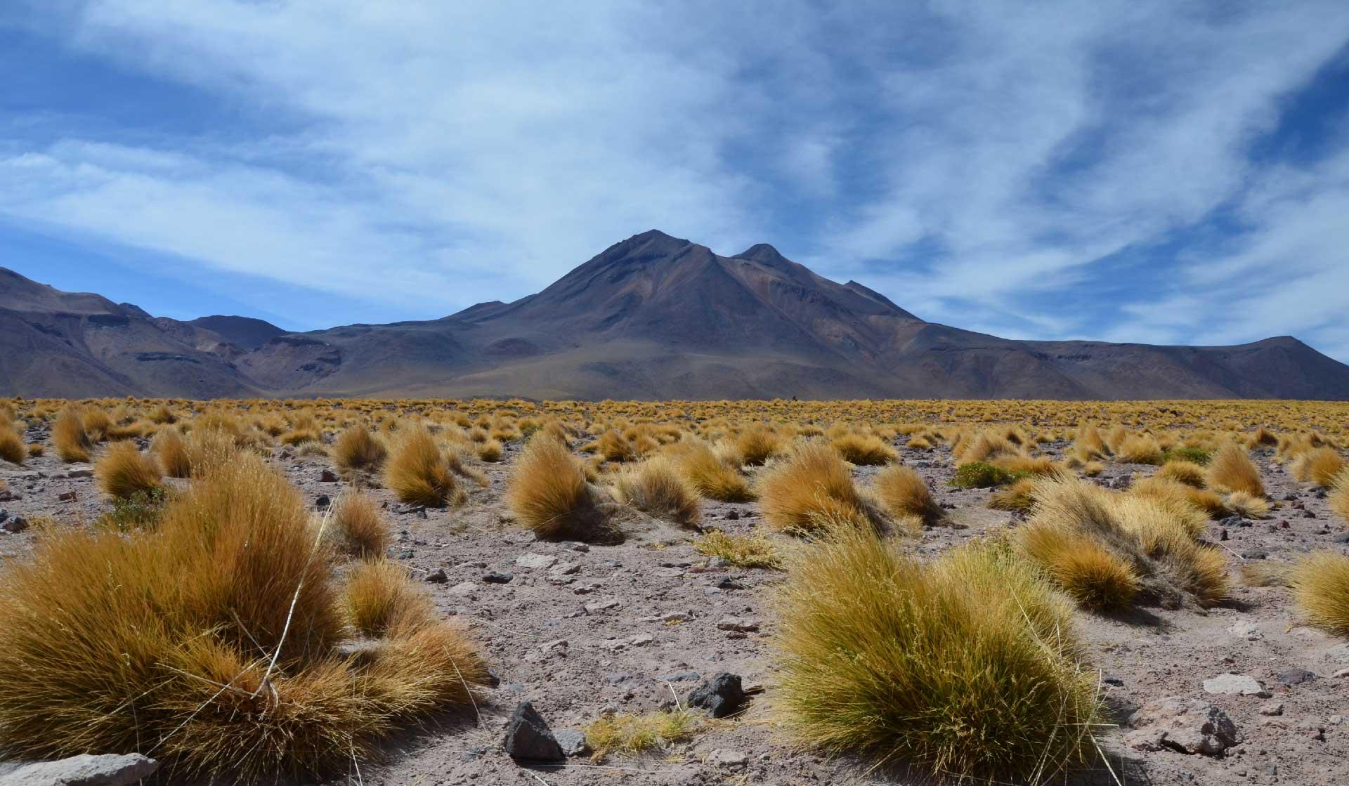 Chile_Atacama_Laguna_Altiplanica-c-Gaelle_Montcharmont-10-web