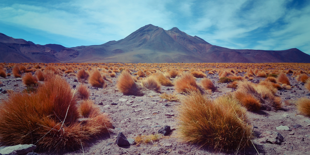 Atacama-desert-G.Montcharmont