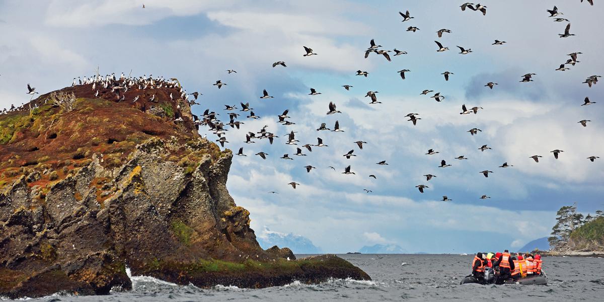 Tucker-islets