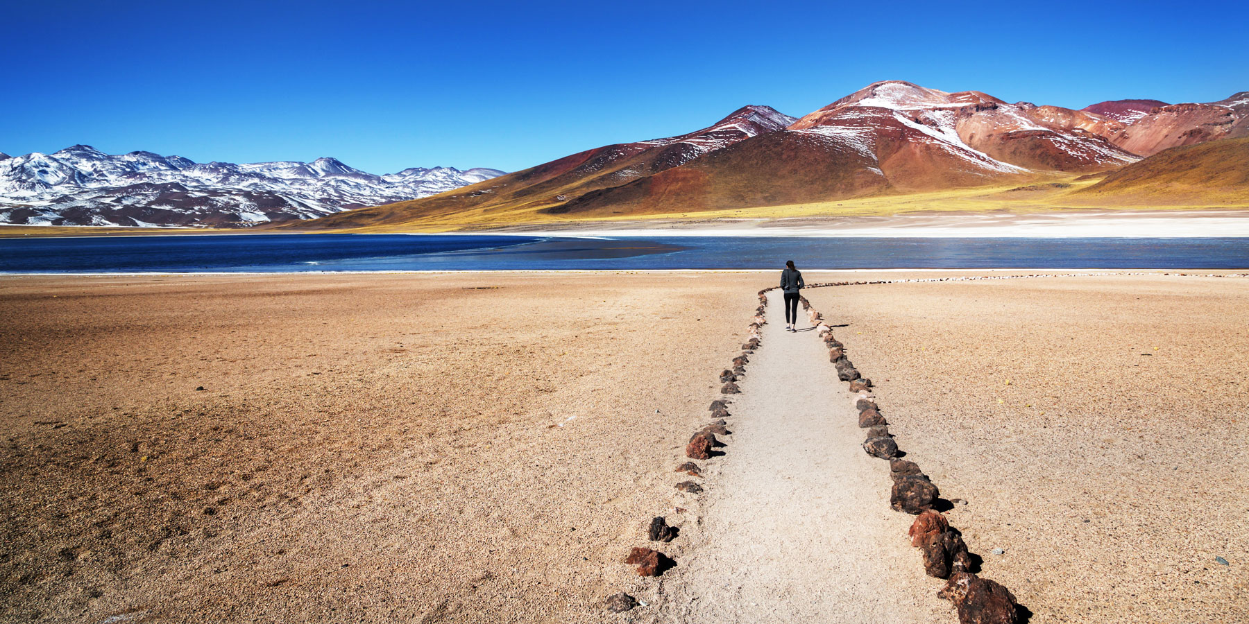 AdobeStock_-LMspencer-atacama