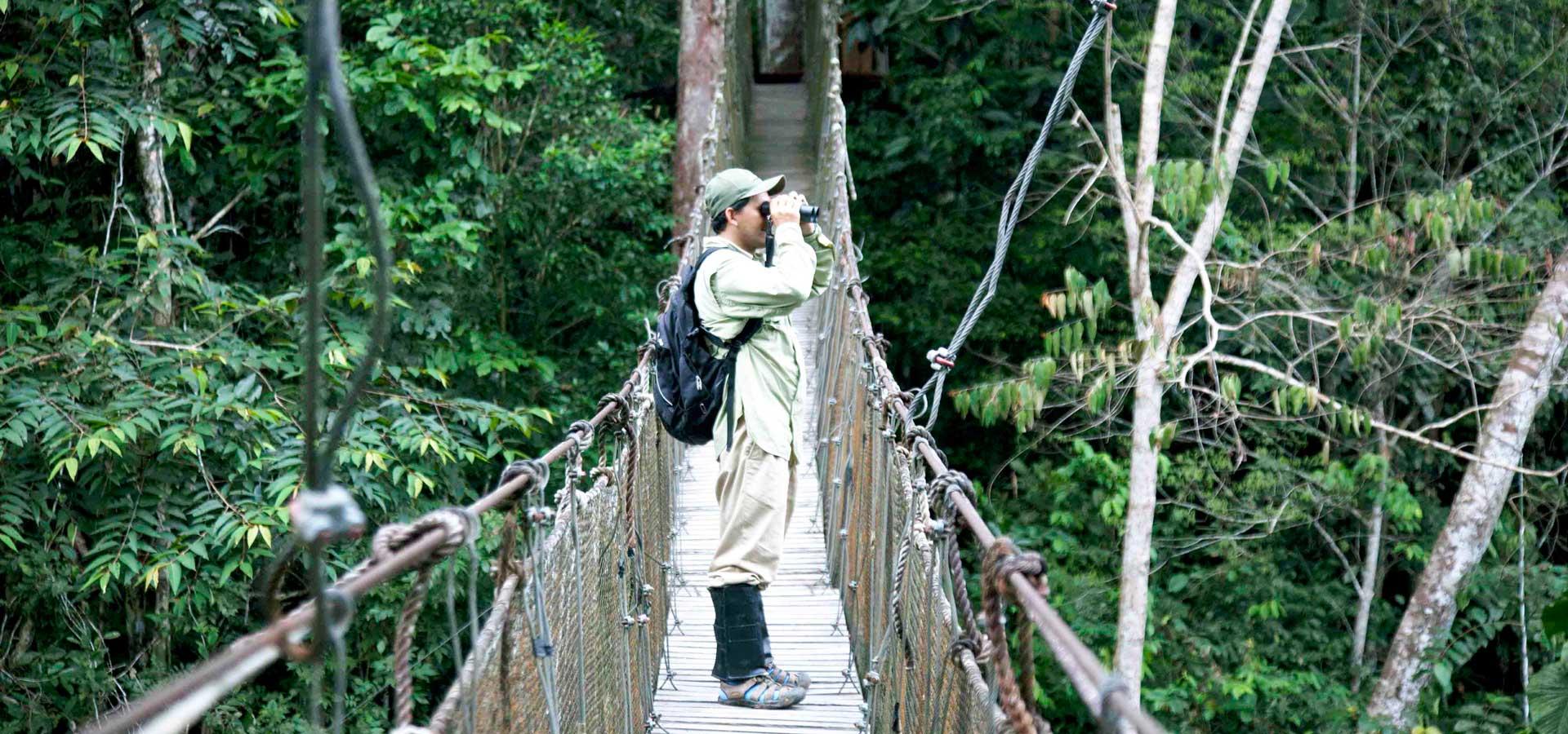 JungleExperiences-ZafiroCruise-Canopy.7-copie